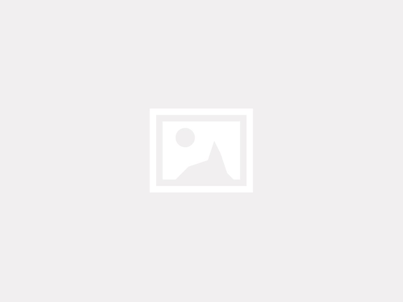 alexandr-podvalny-221893-unsplash